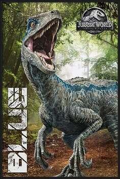 Innrammet plakat Jurassic World Fallen Kingdom - Blue