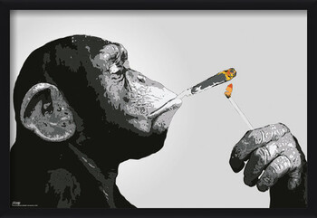 Innrammet plakat Steez - Monkey Smoking